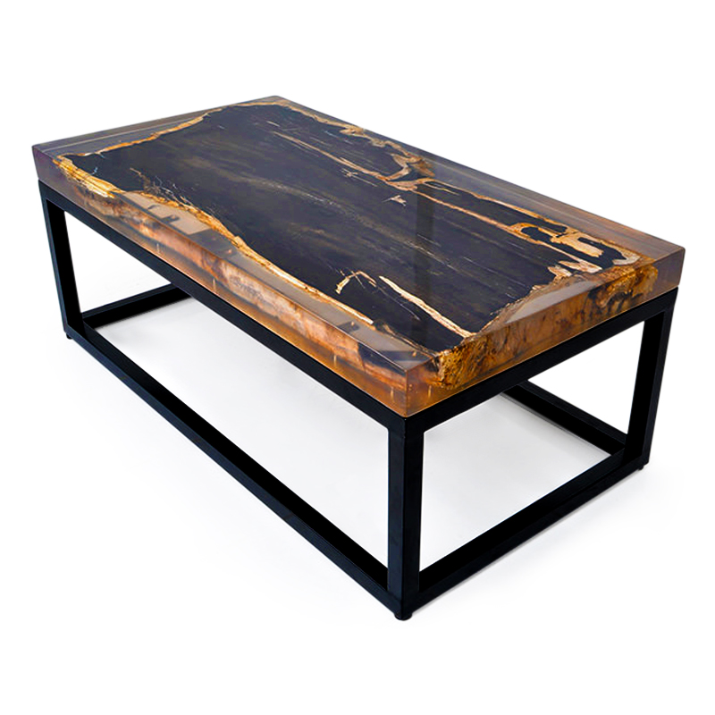 Dive | Fossil, iron & resin coffee table